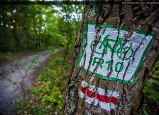 Ścieżka rowerowa - R 10 Świnoujście Międzyzdroje