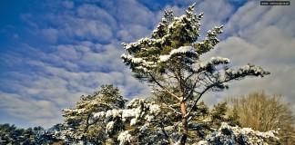 Świnoujście - Zima
