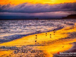 Świnoujście - wschód słońca na plaży