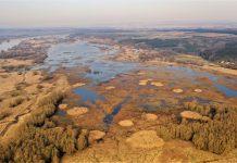 Sztuczne wyspy dla ptaków wodno-błotnych. W trosce o bioróżnorodność doliny Dolnej Odry