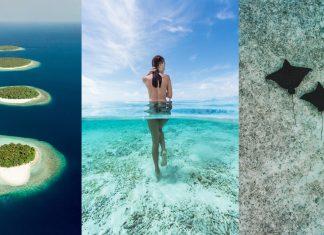 Rajskie Malediwy – wczasy marzeń z CARTER®