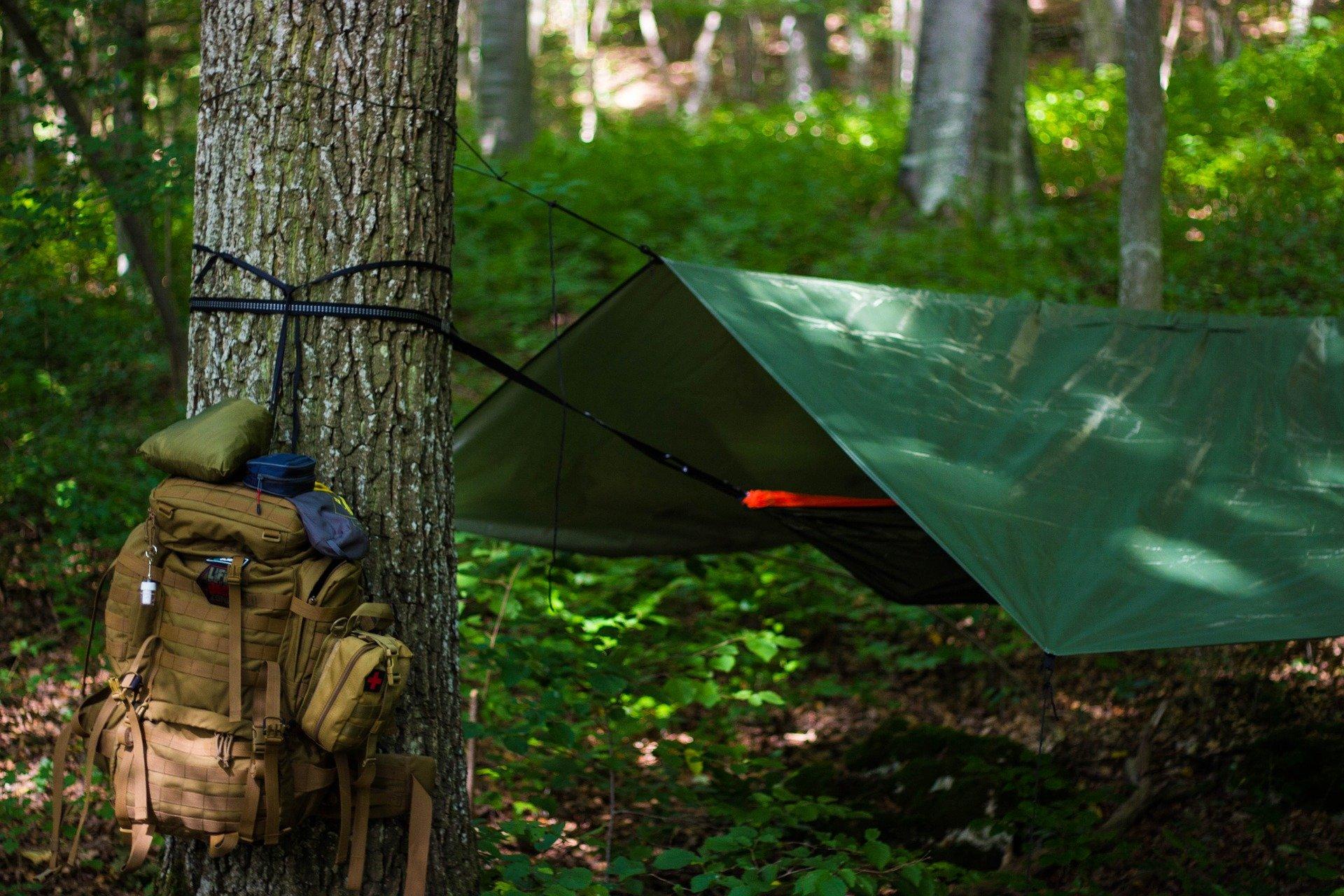 Teraz legalnie będziesz mógł biwakować w lesie