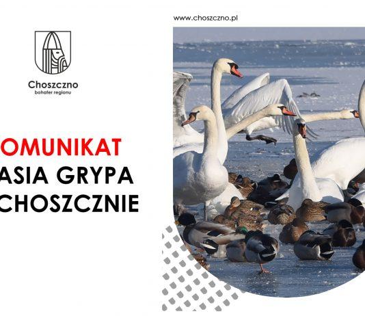 Choszczno - UWAGA - PTASIA GRYPA